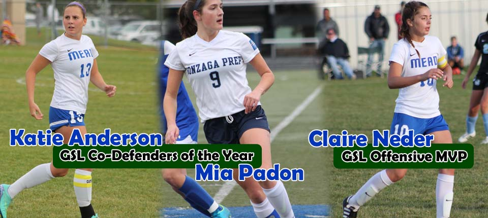 Shadow-Sounders players earn majority of GSL honors :: HS Recap